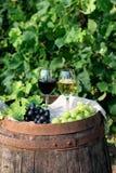 Rött och vitt vin med druvor i natur Royaltyfri Foto