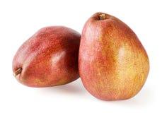Rött päron Fotografering för Bildbyråer