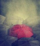 Rött paraply royaltyfri bild