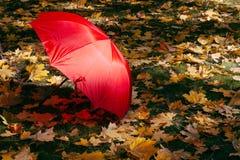 Rött paraply i höst fotografering för bildbyråer