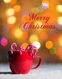 Rött råna med godisrottingar i snö med defocussed felika ljus, bokeh i bakgrunden, festlig julbakgrund Arkivbilder
