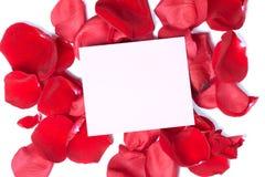 Rött roshälsningkort. Arkivbilder