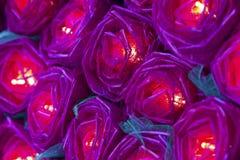 Rött rosljus Royaltyfria Bilder