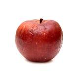 Rött ruttet äpple, naturlig textur royaltyfri bild