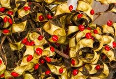 Rött sandlewoodfrö royaltyfria bilder