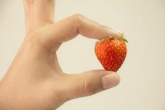 Rött strewberry med handen Arkivfoto