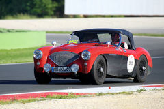 Rött/svart Austin Healey kör 100/4 BN1, 1954, i Autodromoen di Vallelunga under Miglia 1000 Royaltyfria Foton