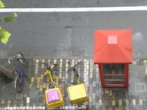 Rött telefonbås med träd & 3 cyklar på en trottoar i Shanghai, Kina royaltyfria bilder