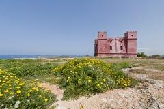 Rött torn i Mellieha Malta Arkivfoto