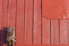 rött trä för bakgrund Royaltyfri Fotografi