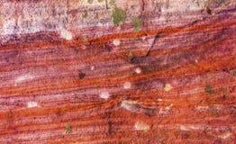 Rött vagga abstrakta near kungliga gravvalv Petra Jordan Arkivbilder