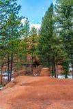 Rött vagga Colorado Springs för tältplatspiknationalskogen woodl Fotografering för Bildbyråer