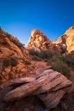 Rött vagga kanjon 11 Arkivfoto