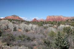 Rött vagga landskapet och träd Arkivfoto