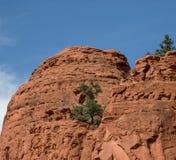 Rött vagga nationalparken, Sedona, Arizona Arkivbild