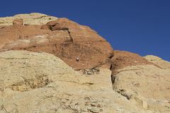 Rött vagga nationalparkklättraren Arkivfoto