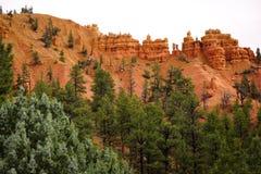 Rött vagga pelare Utah USA royaltyfri fotografi