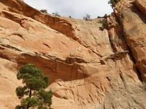 Rött vagga väggar med blå himmel Fönstret vaggar slingan, Arizona Fotografering för Bildbyråer
