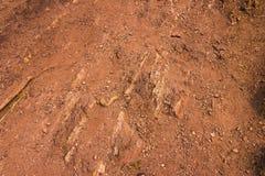 Rött vaggar, sand och kiselstenar Royaltyfri Fotografi