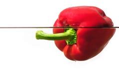 rött vatten för peppar royaltyfri fotografi