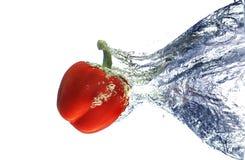 rött vatten för spansk peppar Arkivbilder