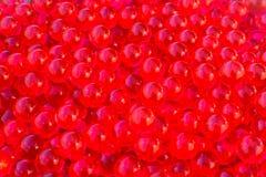 Rött vatten stelnar bollar med bokeh Polymern stelnar Kiseldioxid stelnar Bollar av röd hydrogel Kristallvätskeboll med reflexion arkivfoto