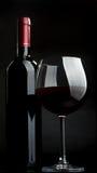 rött vin royaltyfri fotografi