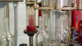 Rött vin buteljeras på vinodlingen På en roterande automatisk transportörmekanism lager videofilmer