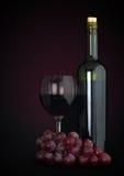 rött vin för druvor för flaskexponeringsglas Arkivfoto