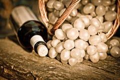 rött vin för druvor för flaskgruppcloseup Royaltyfri Foto
