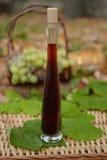 Rött vin i glasflaska Fotografering för Bildbyråer