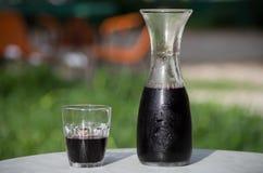 Rött vin i karaff Royaltyfria Bilder