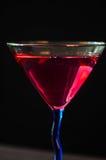 Rött vin i vinexponeringsglas Royaltyfria Bilder