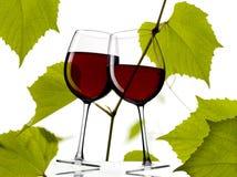 Rött vin med druvaleaves Royaltyfri Fotografi