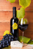 Rött vin med ostmellanmålet och blåttdruvan royaltyfria foton