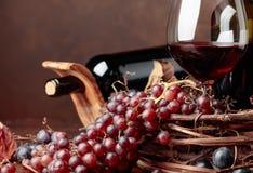 Rött vin och nya druvor med torkat upp vinrankasidor royaltyfri foto