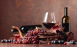 Rött vin och nya druvor med torkat upp vinrankasidor royaltyfri fotografi