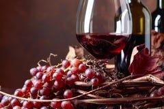 Rött vin och nya druvor med torkat upp vinrankasidor royaltyfria foton