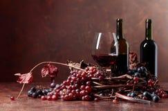 Rött vin och nya druvor med torkat upp vinrankasidor royaltyfri bild