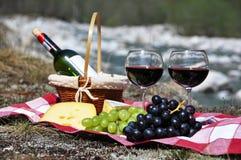 Rött vin, ost och druvor Royaltyfri Bild