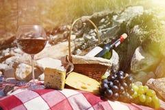 Rött vin, ost och druvor tjänade som på en picknick Royaltyfri Foto