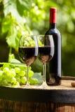 Rött vin på trädgårds- terrass Fotografering för Bildbyråer