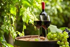 Rött vin på trädgårds- terrass Arkivbild