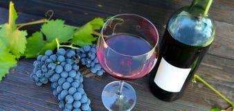 Rött vin vinfestival arkivfoton