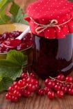 Rött vinbärdriftstopp Royaltyfri Bild