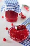 Rött vinbärdriftstopp i den glass bunken Arkivfoto