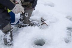 Rússia, pesca do inverno, competições da pesca do gelo, baixo, caixa de pesca, equipamento, gelo, inverno, rio, paisagem do inver Fotos de Stock