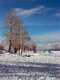 Rússia Sibéria o norte de Buryatiya o mundo a natureza a madeira da paisagem Fotos de Stock