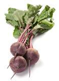 Rübengemüse stockfotos