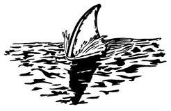 Rückenflosse des Haifischs schneidet die Oberfläche lizenzfreies stockbild